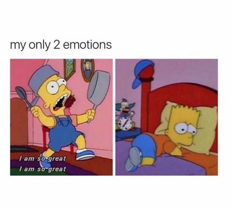 Animated cartoon - my only 2 emotions I am so great I am so great