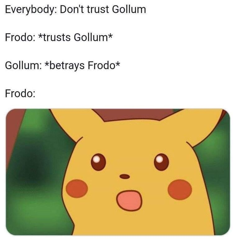Text - Everybody: Don't trust Gollum Frodo: *trusts Gollum* Gollum: *betrays Frodo* Frodo: