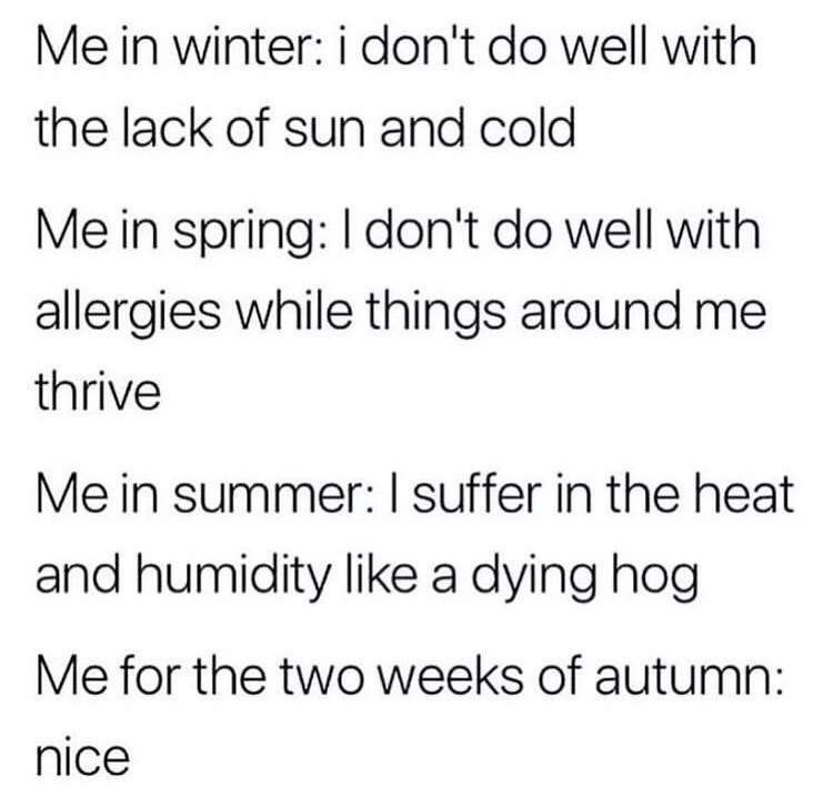 Text - Me in winter: i don't do well with the lack of sun and cold Me in spring: I don't do well with allergies while things around me thrive Me in summer: I suffer in the heat and humidity like a dying hog Me for the two weeks of autumn: nice