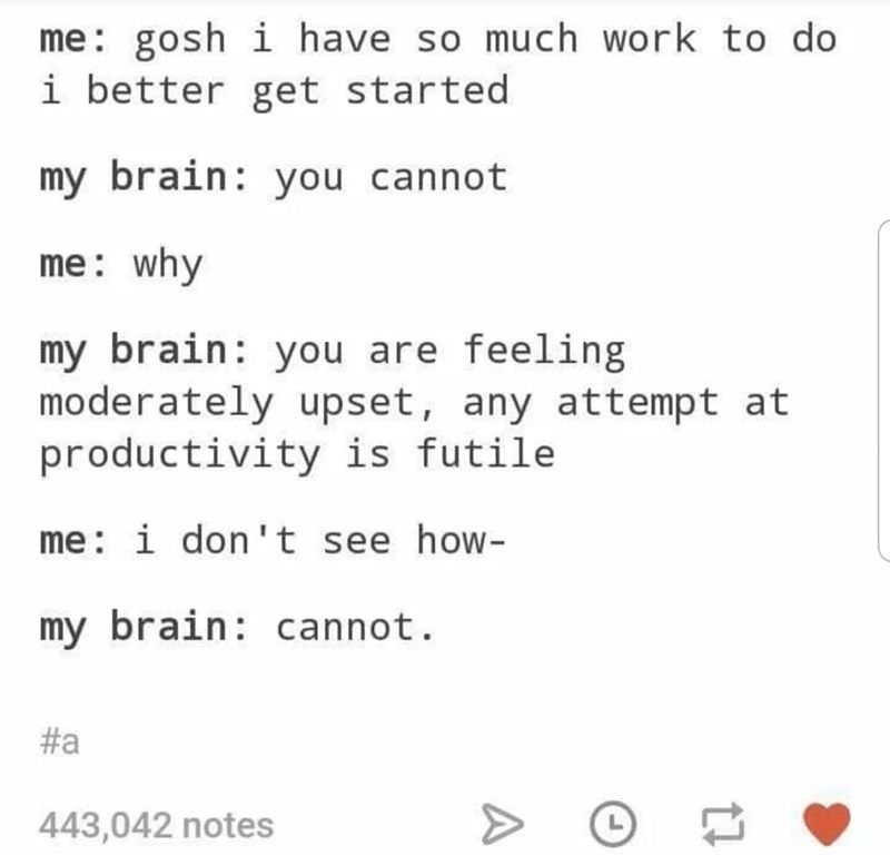 Text - me: gosh i have so much work to do i better get started my brain: you cannot me: why my brain: you are feeling moderately upset, any attempt at productivity is futile me: i don't see how- my brain: cannot. #a 443,042 notes A