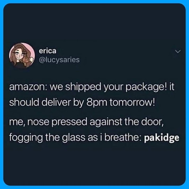 Text - erica @lucysaries amazon: we shipped your package! it should deliver by 8pm tomorrow! me, nose pressed against the door, fogging the glass as i breathe: pakidge