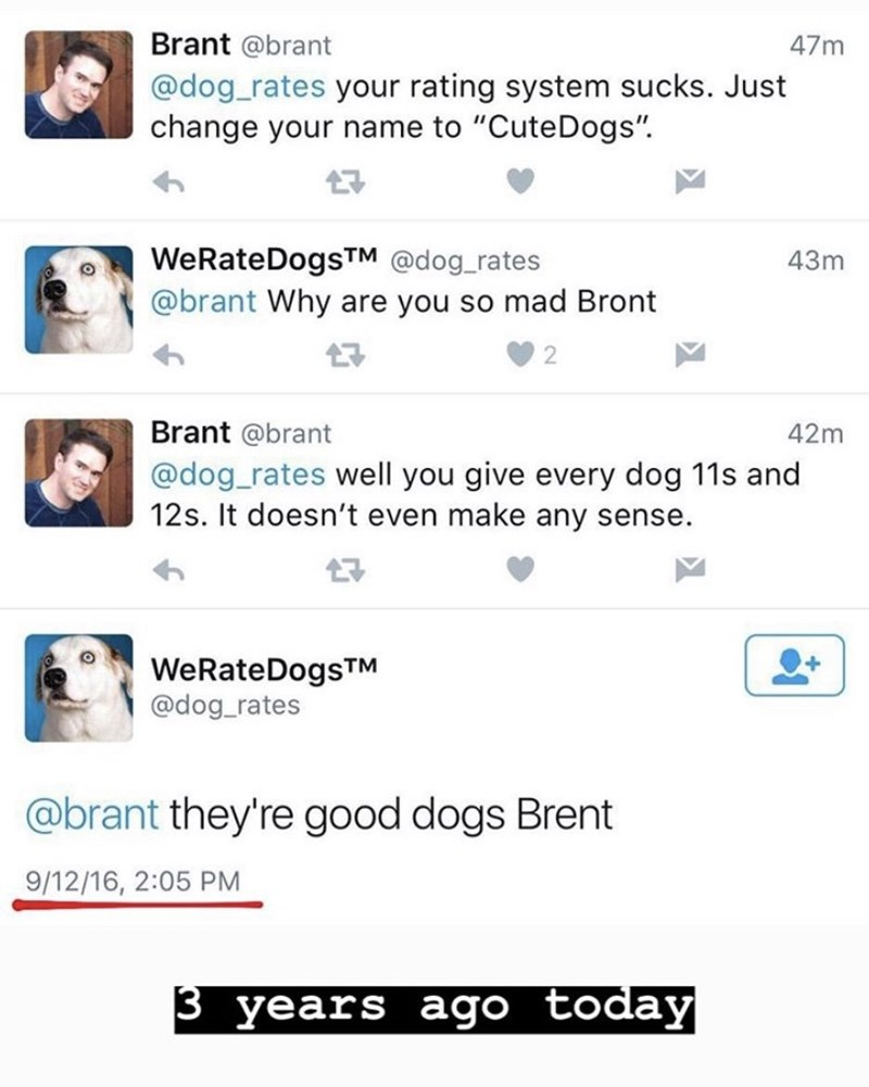 "Text - Brant @brant 47m @dog_rates your rating system sucks. Just change your name to ""CuteDogs"" WeRateDogsTM @dog rates @brant Why are you so mad Bront 43m 2 Brant @brant 42m @dog_rates well you give every dog 11s and 12s. It doesn't even make any sense. WeRateDogsTM @dog_rates @brant they're good dogs Brent 9/12/16, 2:05 PM 3 years ago today"
