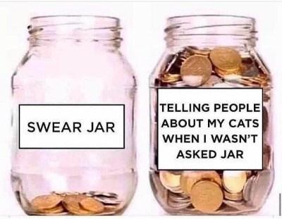 Mason jar - TELLING PEOPLE ABOUT MY CATS WHEN I WASN'T SWEAR JAR ASKED JAR