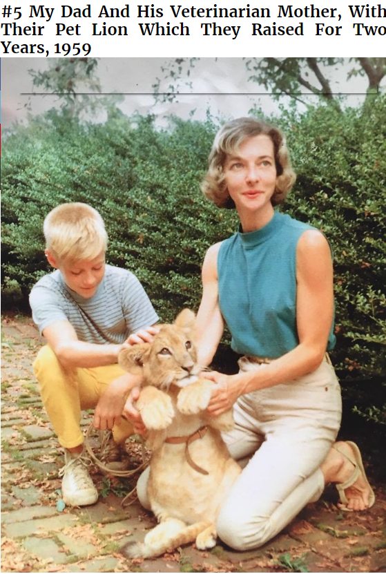 Companion dog - #5 My Dad And His Veterinarian Mother, With Their Pet Lion Which They Raised For Twa Years, 1959