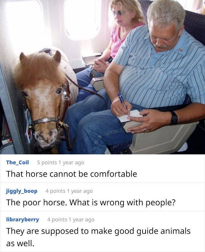 Horse - The_Coil 5 points 1 year ago That horse cannot be comfortable jiggly_boop 4 points 1 year ago The poor horse. What is wrong with people? libraryberry 4 points 1 year ago They are supposed to make good guide animals as well