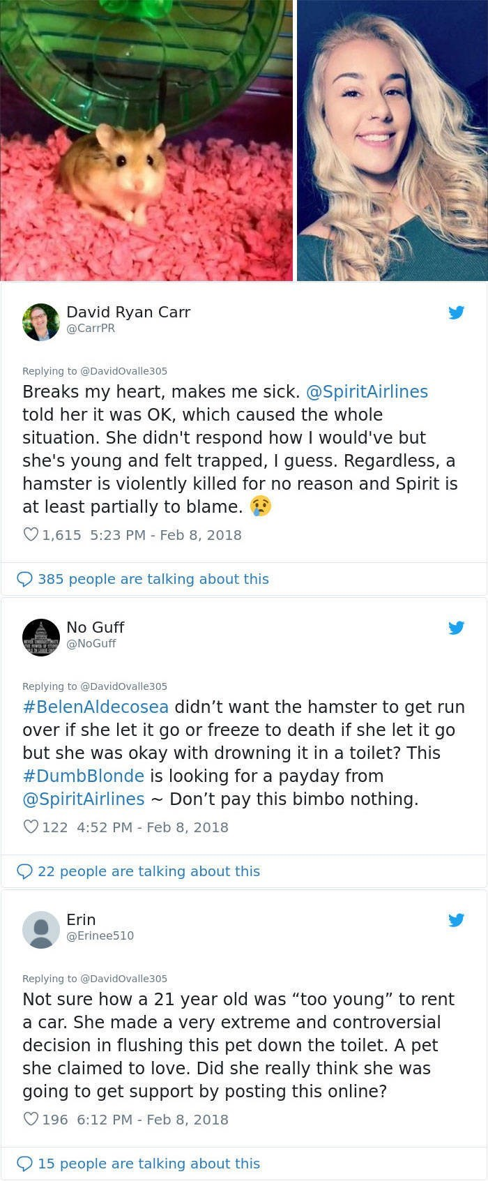 Text - David Ryan Carr @CarrPR Replying to @Davidovalle305 Breaks my heart, makes me sick. @SpiritAirlines told her it was OK, which caused the whole situation. She didn't respond how I would've but she's young and felt trapped, I guess. Regardless, a hamster is violently killed for no reason and Spirit is at least partially to blame. 1,615 5:23 PM Feb 8, 2018 385 people are talking about this No Guff @NoGuff Replying to @Davidovalle305 #BelenAldecosea didn't want the hamster to get run over if