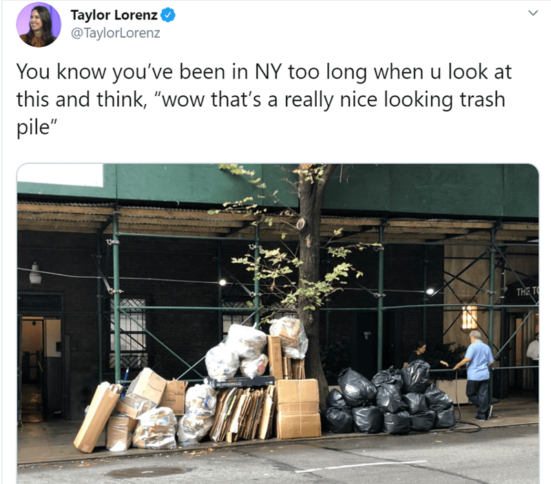 """Adaptation - Taylor Lorenz @TaylorLorenz You know you've been in NY too long when u look at this and think, """"wow that's a really nice looking trash pile"""" THE TO >"""