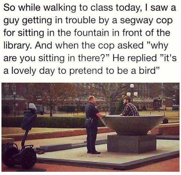 """Text - Text - So while walking to class today, I saw a guy getting in trouble by a segway cop for sitting in the fountain in front of the library. And when the cop asked """"why you sitting in there?"""" He replied """"it's lovely day to pretend to be a bird"""""""