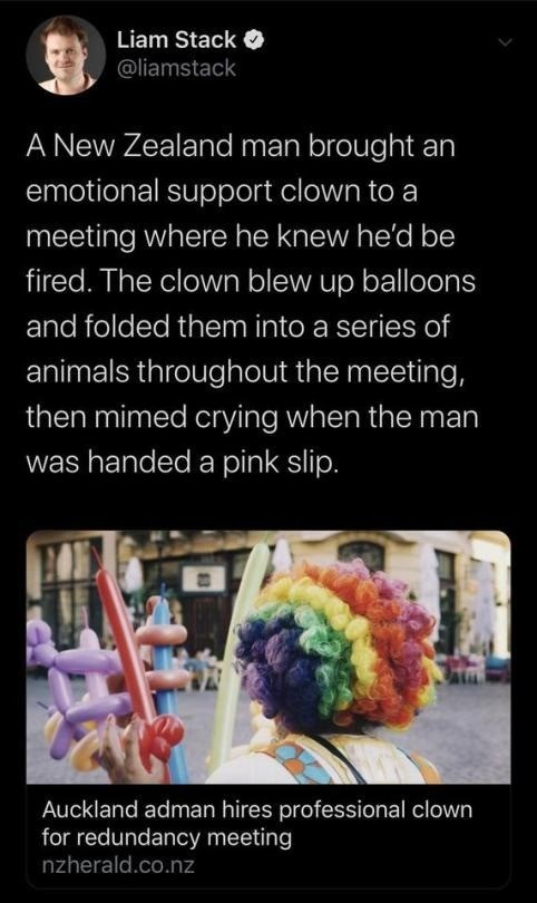 Text - Liam Stack @liamstack A New Zealand man brought an emotional support clown to a meeting where he knew he'd be fired. The clown blew up balloons and folded them into a series of animals throughout the meeting, then mimed crying when the man was handed a pink slip. Auckland adman hires professional clown for redundancy meeting nzherald.co.nz
