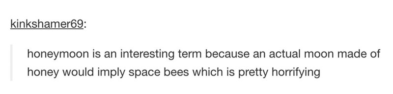 Text - kinkshamer69: honeymoon is an interesting term because an actual moon made of honey would imply space bees which is pretty horrifying
