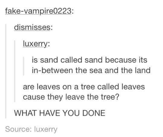 Text - fake-vampire0223: dismisses: luxerry: is sand called sand because its in-between the sea and the land are leaves on a tree called leaves cause they leave the tree? WHAT HAVE YOU DONE Source: luxerry