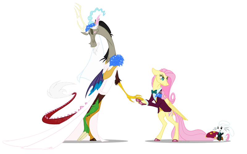 angel discord grievousfan fluttershy she talks to angel - 9359856128