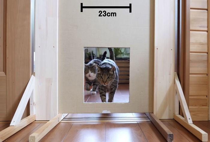 Floor - 23cm