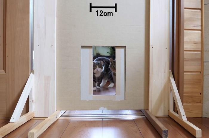 Room - 12cm