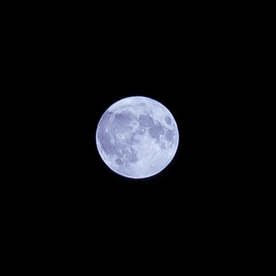 photo white harvest moon in black sky