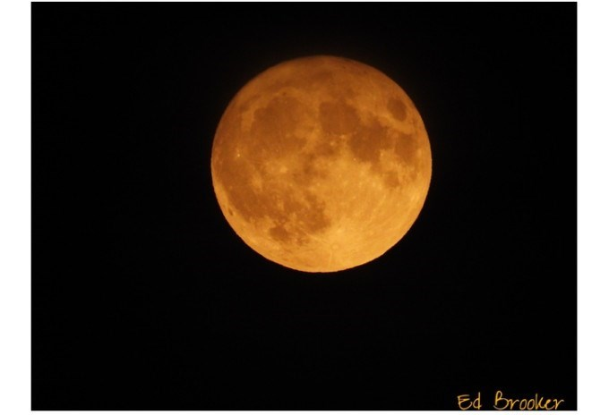 yellow orange harvest moon in black sky
