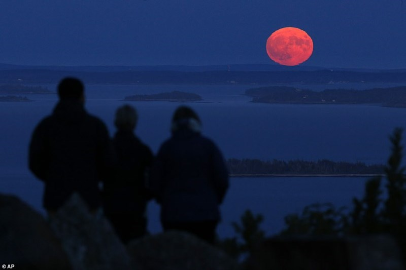 pink harvest moon with three people watching it