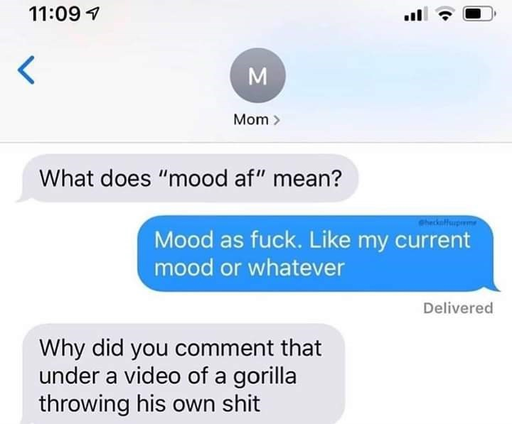 """Text - 11:09 Mom> What does """"mood af"""" mean? Checkafhupme Mood as fuck. Like my current mood or whatever Delivered Why did you comment that under a video of a gorilla throwing his own shit M"""