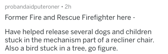 Text - probandaidputeroner 2h Former Fire and Rescue Firefighter here - Have helped release several dogs and children stuck in the mechanism part of a recliner chair. Also a bird stuck in a tree, go figure