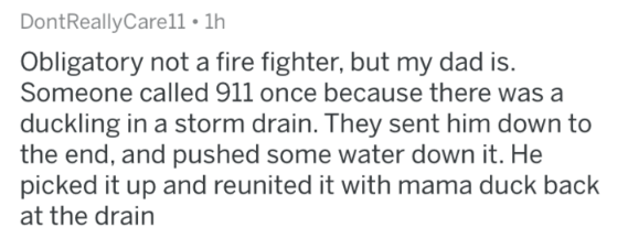 Text - DontReallyCare11 1h Obligatory not a fire fighter, but my dad is. Someone called 911 once because there was a duckling in a storm drain. They sent him down to the end, and pushed some water down it. He picked it up and reunited it with mama duck back at the drain