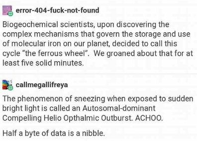 """Text - error-404-fuck-not-found Biogeochemical scientists, upon di scovering the complex mechanisms that govern the storage and use of molecular iron on our planet, decided to call this cycle """"the ferrous wheel"""". We groaned about that for at least five solid minutes. callmegallifreya The phenomenon of sneezing when exposed to sudden bright light is called an Autosomal-dominant Compelling Helio Opthalmic Outburst. ACHOO. Half a byte of data is a nibble"""
