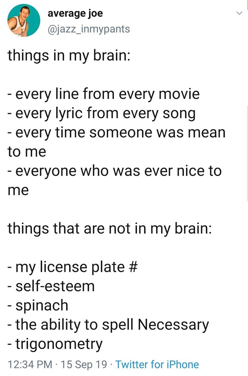 Text - average joe @jazz_inmypants things in my brain: -every line from every movie -every lyric from every song -every time someone was mean to me -everyone who was ever nice to me things that are not in my brain: -my license plate # self-esteem -spinach - the ability to spell Necessary -trigonometry 12:34 PM 15 Sep 19 Twitter for iPhone