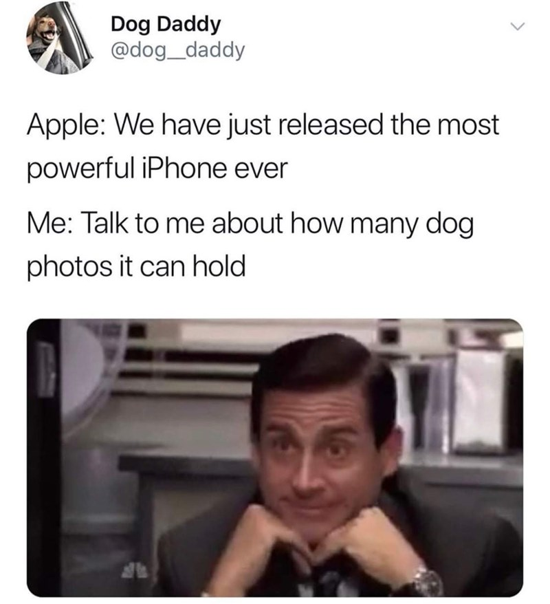 Text - Dog Daddy @dog_daddy Apple: We have just released the most powerful iPhone ever Me: Talk to me about how many dog photos it can hold