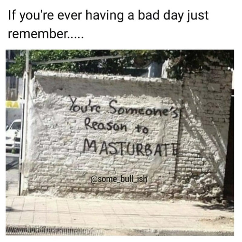 Text - If you're ever having a bad day just remember... Youre Someones Reason to MASTURBATE @some bull ish