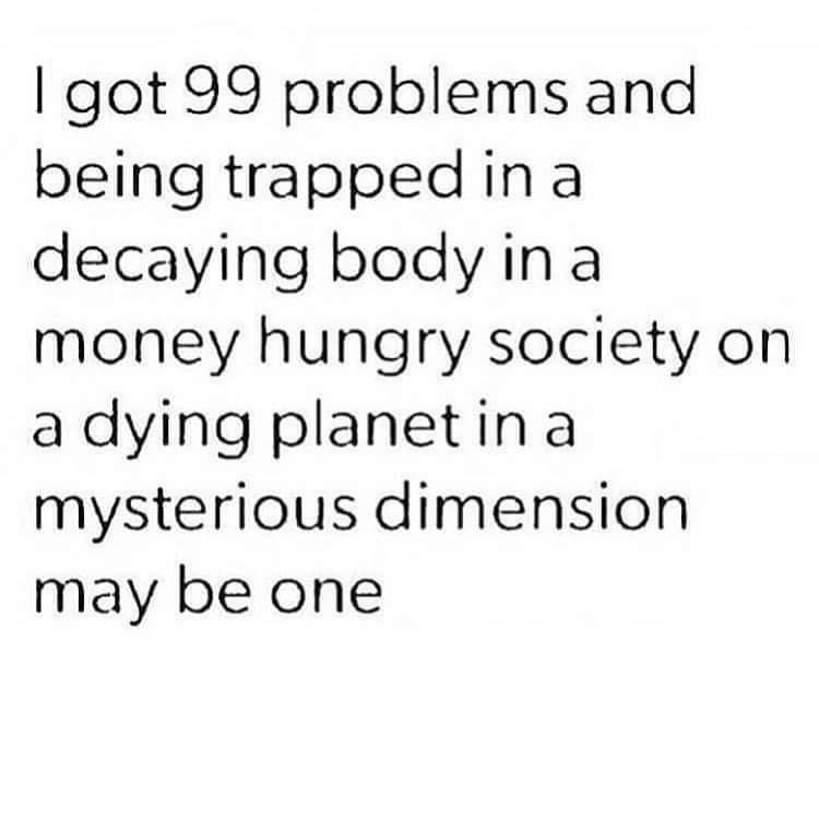 Text - I got 99 problems and being trapped in a decaying body in a money hungry society on a dying planet in a mysterious dimension may be one