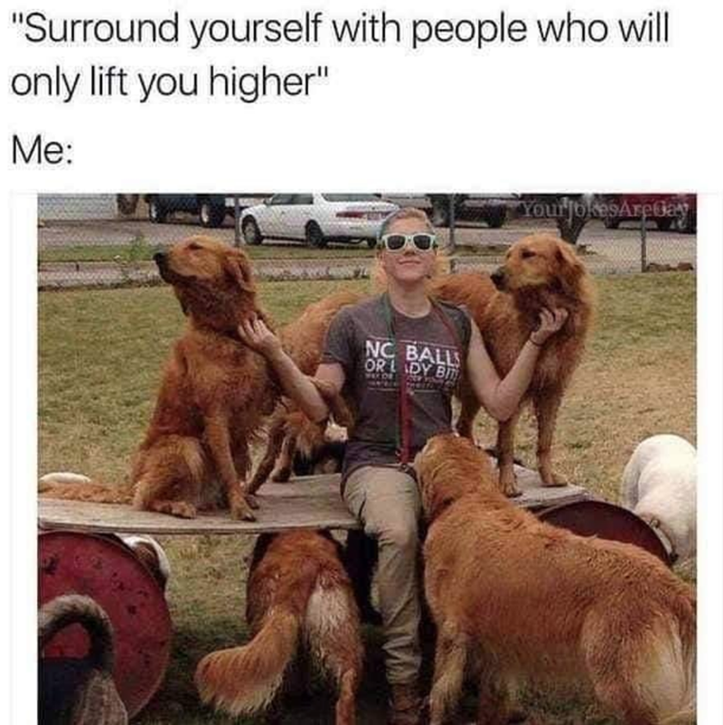 """Dog - """"Surround yourself with people who will only lift you higher"""" Me: YourjokesAretay NC BALL OR DY BI WED Y"""