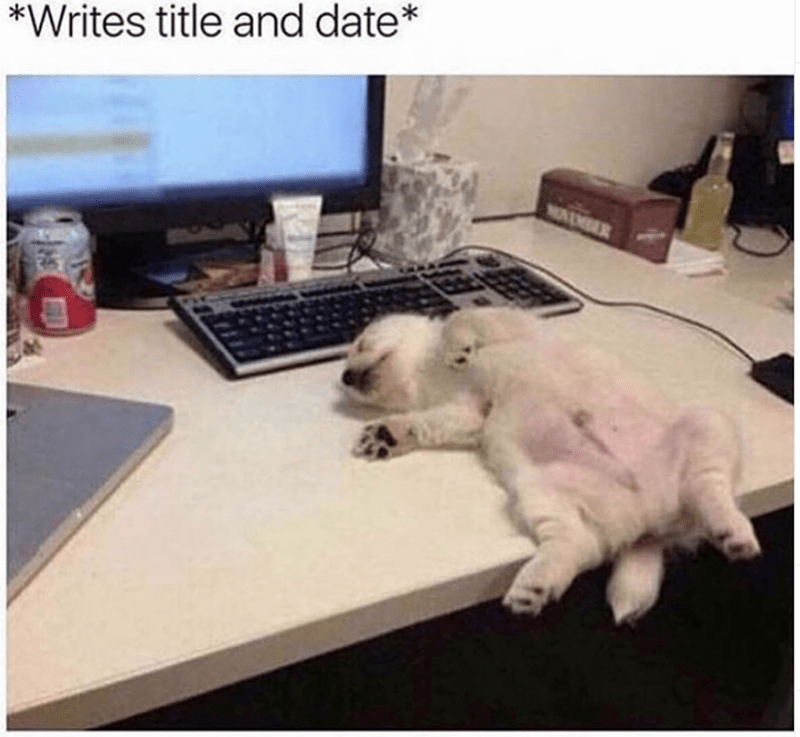 Cat - *Writes title and date* NAM