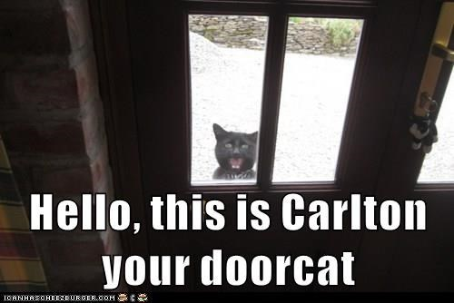 Cat - Hello, this is Carlton your doorcat ICANHASCHEE2EURGER cOM