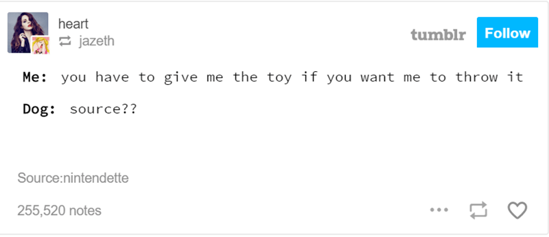 Text - heart Follow tumblr jazeth Me: you have to give me the toy if you want me to throw it Dog: source?? Source:nintendette 255,520 notes