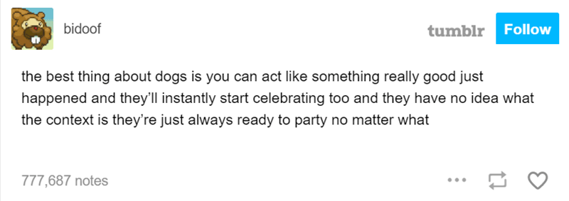 Text - bidoof tumblr Follow the best thing about dogs is you can act like something really good just happened and they'll instantly start celebrating too and they have no idea what the context is they're just always ready to party no matter what 777,687 notes