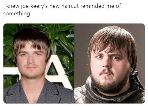 Face - i knew joe keery's new haircut reminded me of something