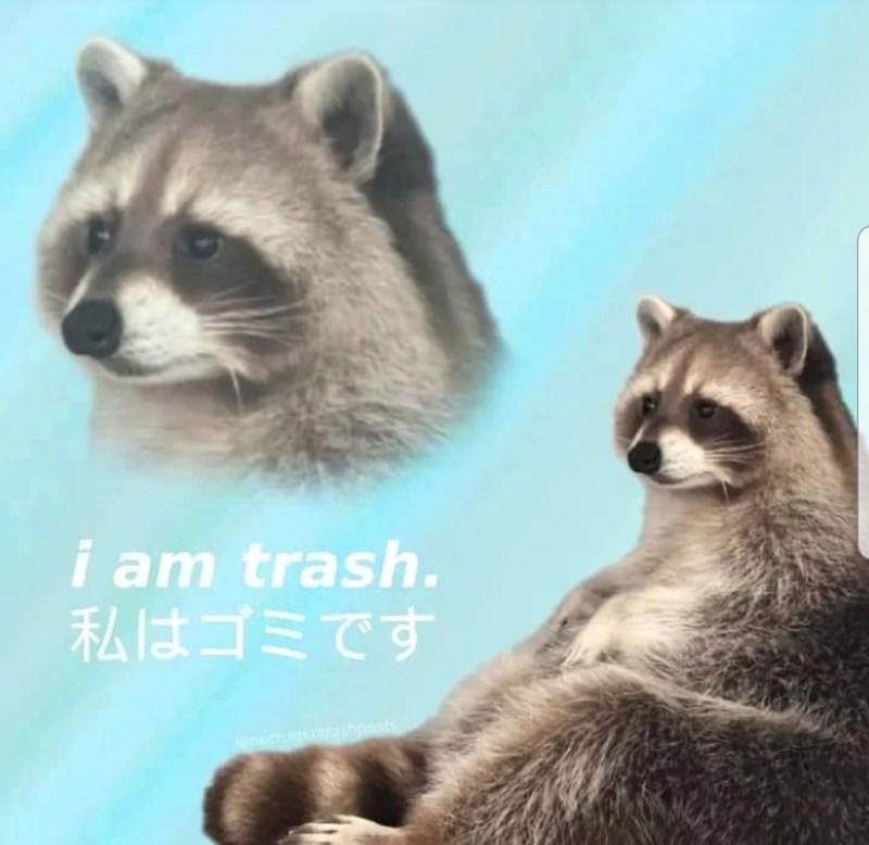 Bird - Mammal - i am trash. 私はゴミです