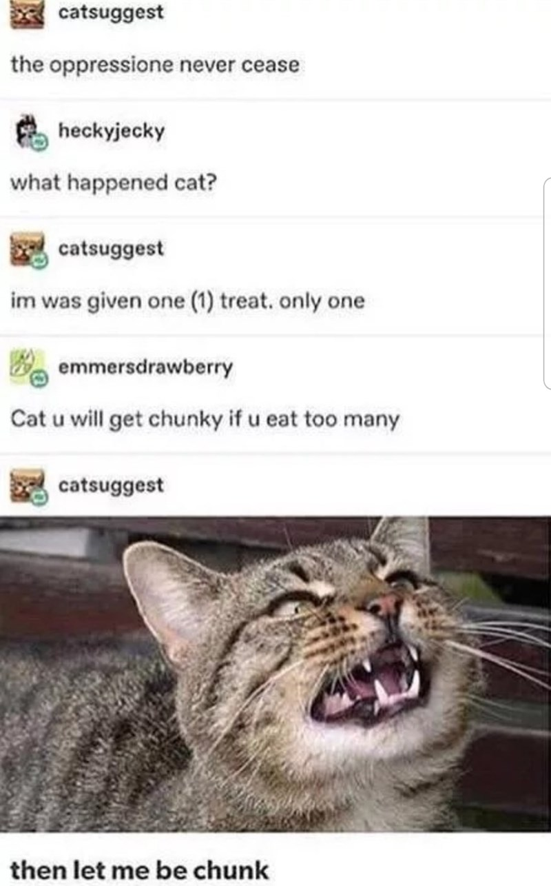 Cat - catsuggest the oppressione never cease heckyjecky what happened cat? catsuggest im was given one (1) treat. only one emmersdrawberry Cat u will get chunky if u eat too many catsuggest then let me be chunk