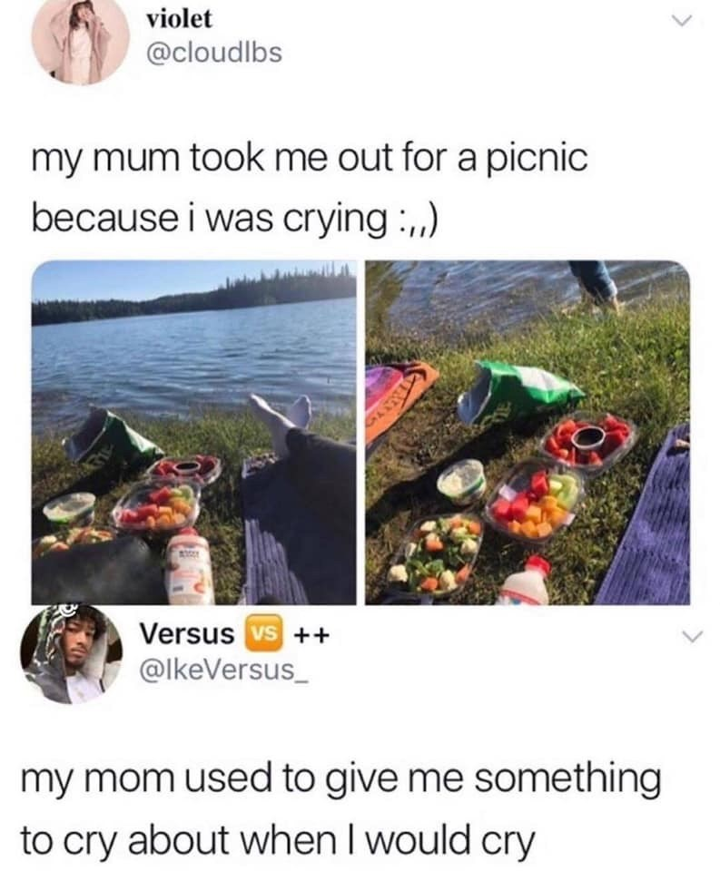 Adaptation - violet @cloudlbs my mum took me out for a picnic because i was crying,, 1 Versus vs+ @lkeVersus_ my mom used to give me something to cry about when I would cry