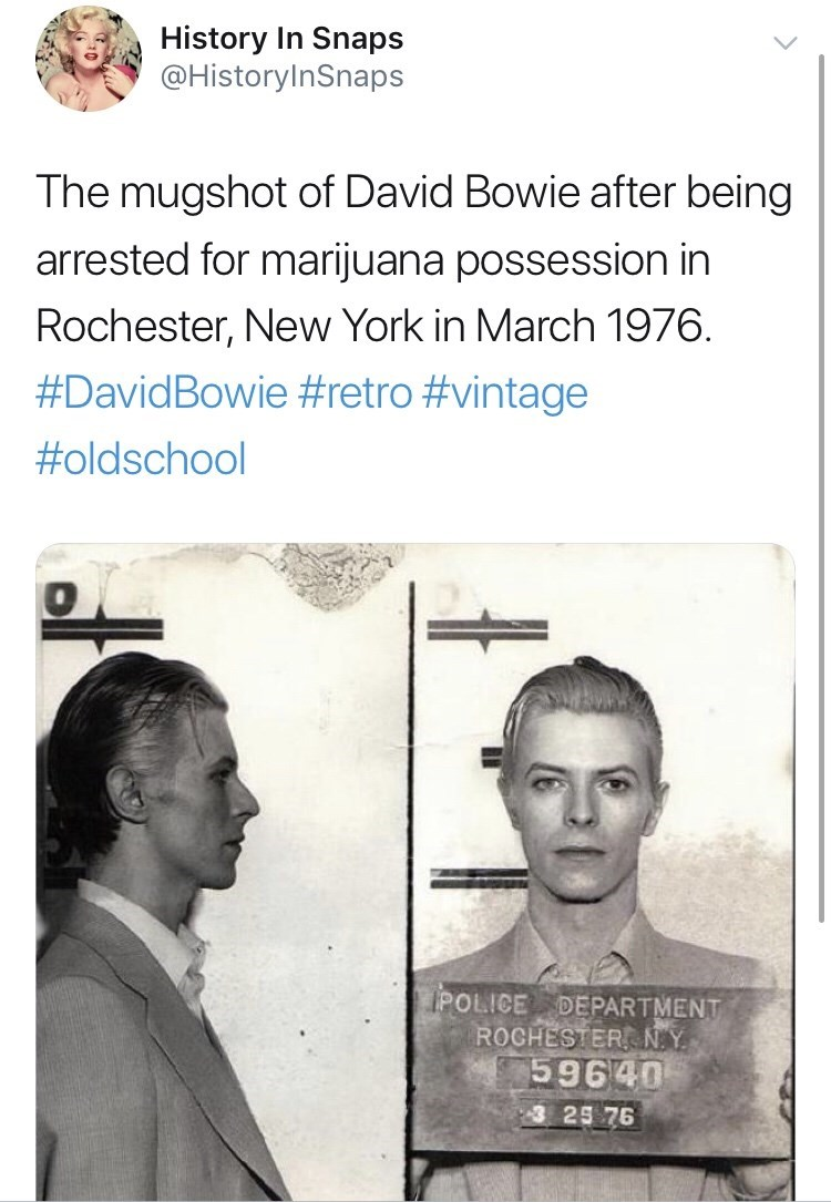 Text - Text - History In Snaps @HistoryInSnaps The mugshot of David Bowie after being arrested for marijuana possession in Rochester, New York in March 1976 #DavidBowie #retro #vintage #oldschool 1POLICE DEPARTMENT ROCHESTER N.Y 59640 3 25 76