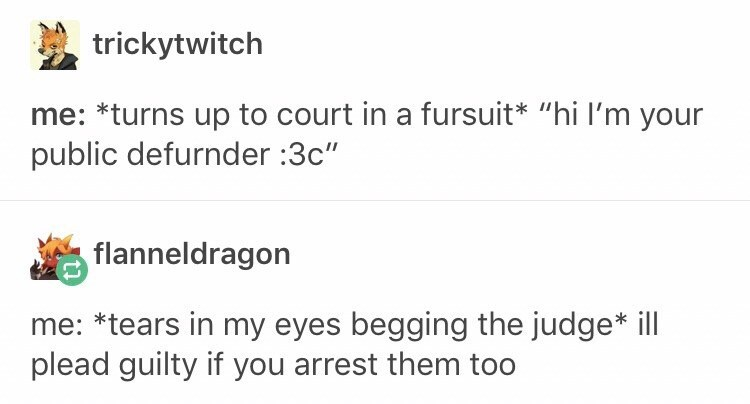 """Text - trickytwitch *turns up to court in a fursuit* """"hi I'm your public defurnder :3c"""" flanneldragon me: *tears in my eyes begging the judge* ill plead guilty if you arrest them too"""