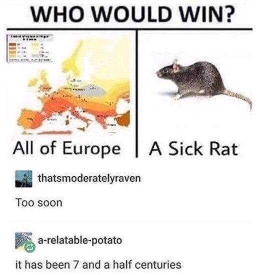 Text - WHO WOULD WIN? All of Europe A Sick Rat thatsmoderatelyraven Too soon a-relatable-potato it has been 7 and a half centuries