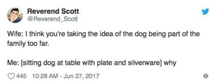 Text - Reverend Scott @Reverend_Scott Wife: I think you're taking the idea of the dog being part of the family too far. Me: [sitting dog at table with plate and silverware] why 445 10:28 AM - Jun 27, 2017