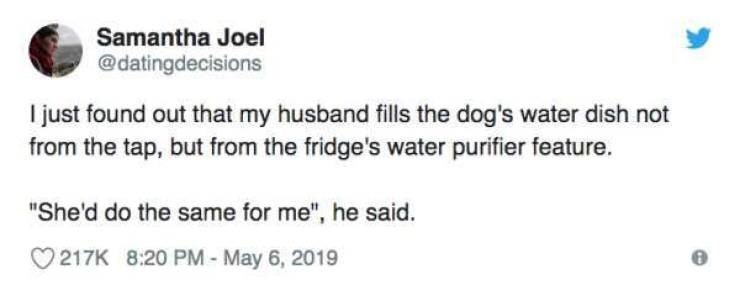 """Text - Samantha Joel @datingdecisions I just found out that my husband fills the dog's water dish not from the tap, but from the fridge's water purifier feature. """"She'd do the same for me"""", he said. 217K 8:20 PM- May 6, 2019"""