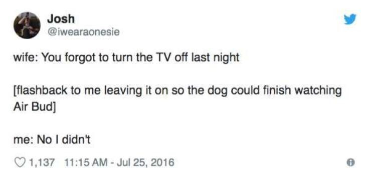 Text - Josh @iwearaonesie wife: You forgot to turn the TV off last night [flashback to me leaving it on so the dog could finish watching Air Bud] me: No I didn't 1115 AM - Jul 25, 2016 1,137