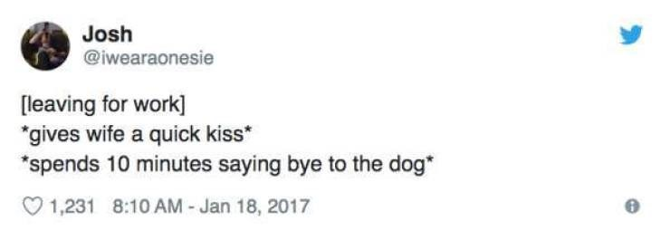 """Text - Josh @iwearaonesie [leaving for work] """"gives wife a quick kiss spends 10 minutes saying bye to the dog 1,231 8:10 AM Jan 18, 2017"""