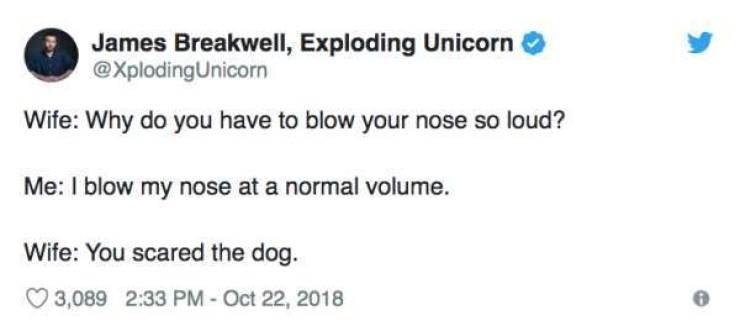 Text - James Breakwell, Exploding Unicorn @XplodingUnicorn Wife: Why do you have to blow your nose so loud? Me: I blow my nose at a normal volume Wife: You scared the dog. 3,089 2:33 PM - Oct 22, 2018