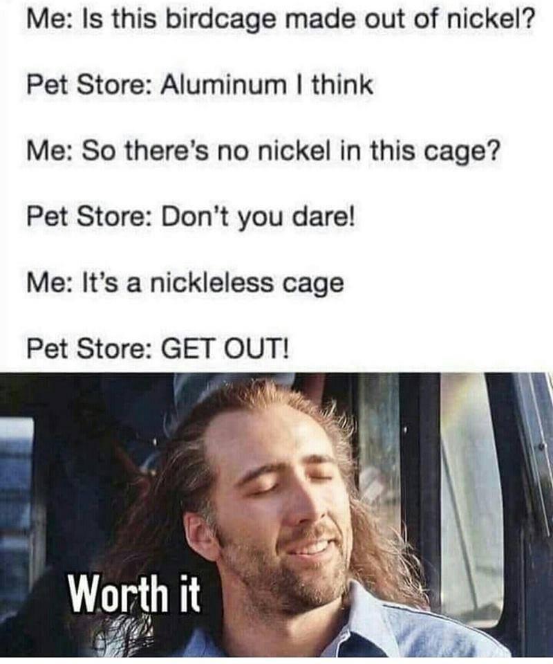 animal memes - 9361785600