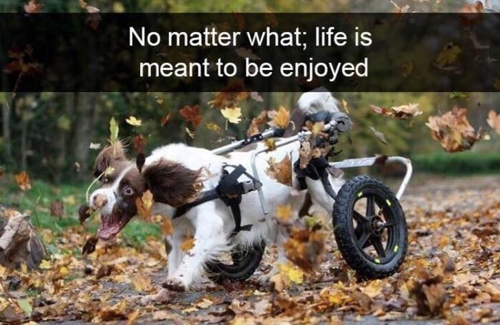 Motorcycling - No matter what; life is meant to be enjoyed