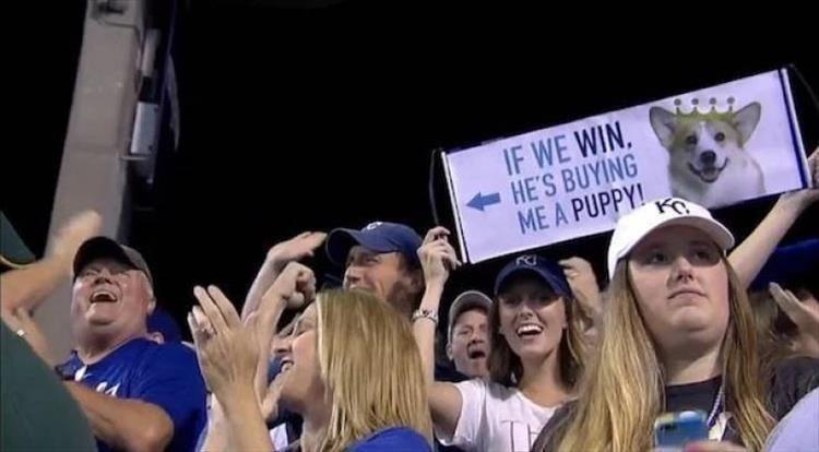 Fan - IF WE WIN. HE'S BUYING ME A PUPPY!