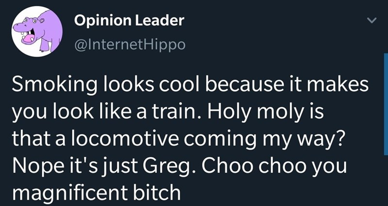 Text - Opinion Leader @InternetHippo Smoking looks cool because it makes you look like a train. Holy moly is that a locomotive coming my way? Nope it's just Greg. Choo choo you magnificent bitch